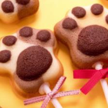 강아지 발바닥 케이크 만들기